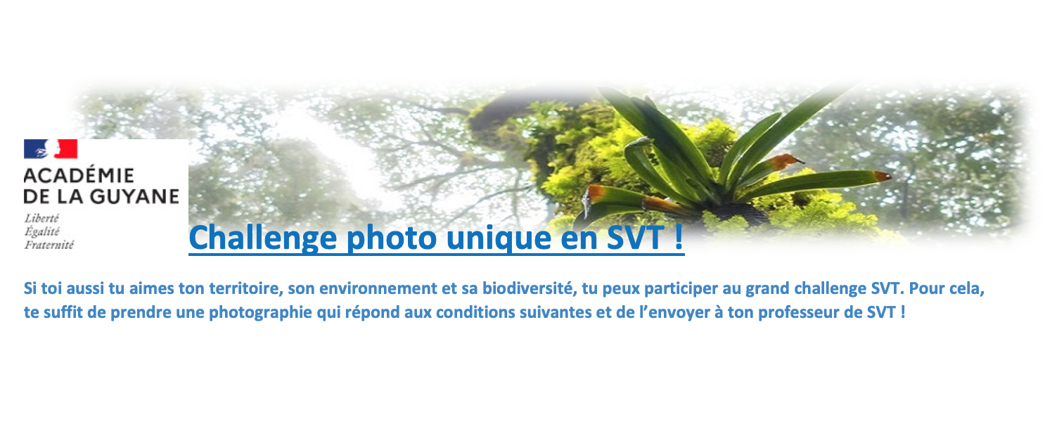 Challenge photo unique en SVT : exprime ta nature !